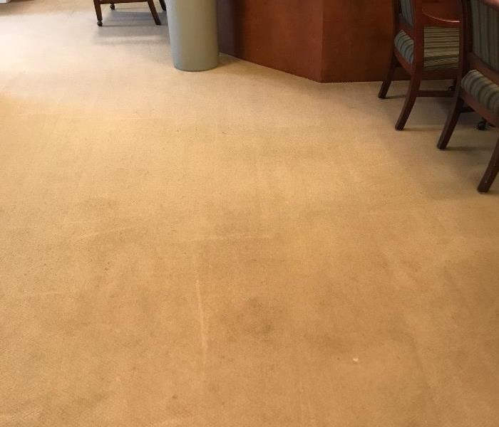 Carpet Cleaning Before and After After