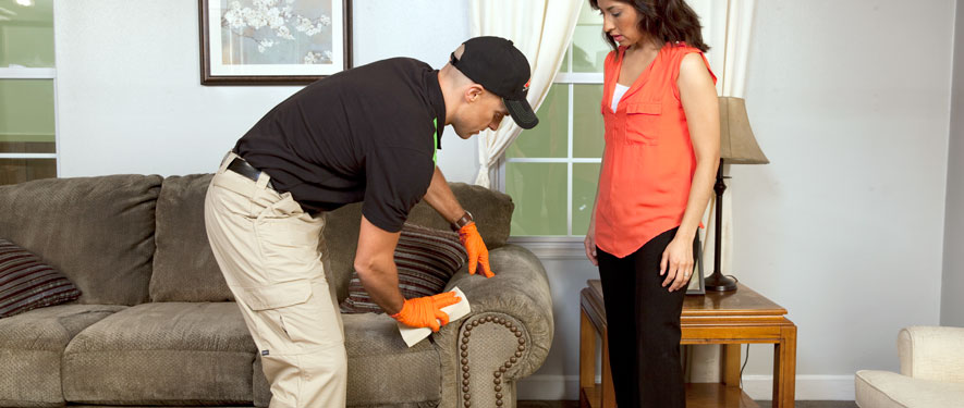 Paducah, KY carpet upholstery cleaning